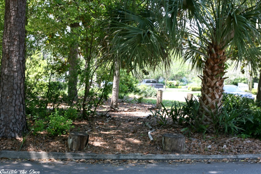 Native Park Jacksonville / OutsideTheDen.com